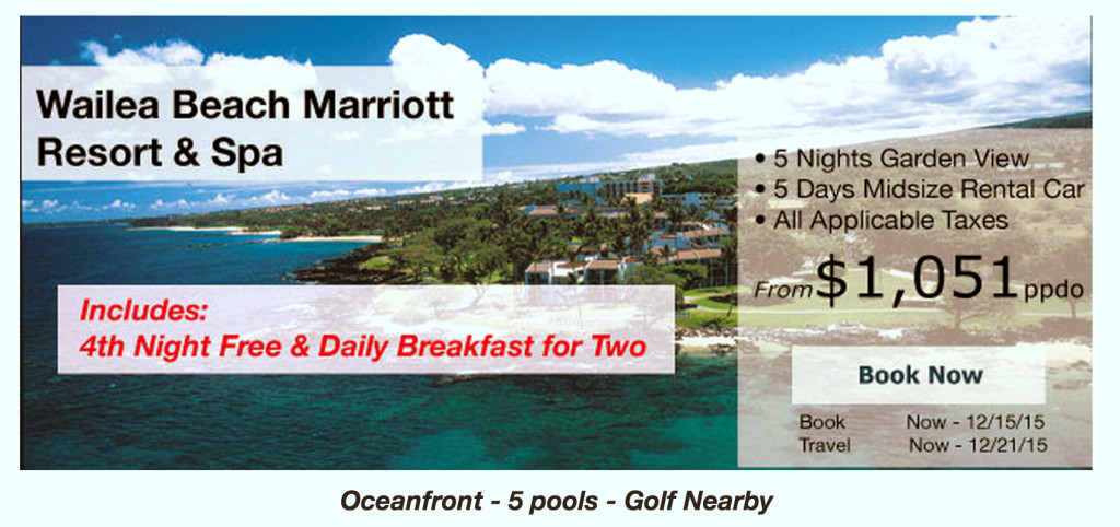 Wailea Bicket List TRavel Tours.png